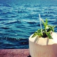 【美容効果バツグン】海外のセレブ愛飲のココナッツウォーターは要チェック!
