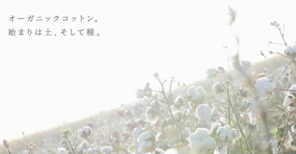 img_top