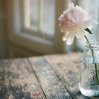 季節の花をお手軽に楽しもう。シンプルな一輪挿しはいかが?