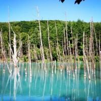 広大な大地、北海道でパワースポット巡りをしてみませんか?