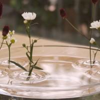 手持ちの器が雰囲気のある一輪挿しに。【RIPPLE】で水面に花を浮かべよう♪