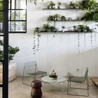 心地よい季節にぴったり☆植物と家具のインテリア例を8つご紹介♪