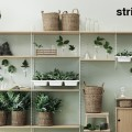 string_bowlshelf_800_400