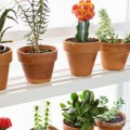window-planter-shelf-600x900