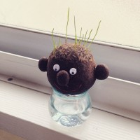 ヘアースタイル自由自在♡クスッと笑える植物ヘアーラボを育てよう!