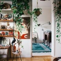 観葉植物を上手に取り入れたインテリア実例集☆一日の疲れも癒えるリラックス空間を作ろう!