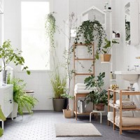 apartmentgardening4-720x540