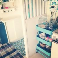 キッチンだけではもったいない!IKEAの【RÅSKOG】が家の中の色々なところで大活躍!