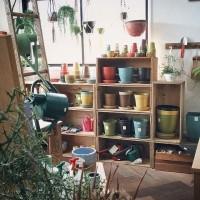 話題の植木鉢【ecoforms / エコフォームズ】!驚異のおしゃれエコ鉢のコーデいろいろご紹介します♫