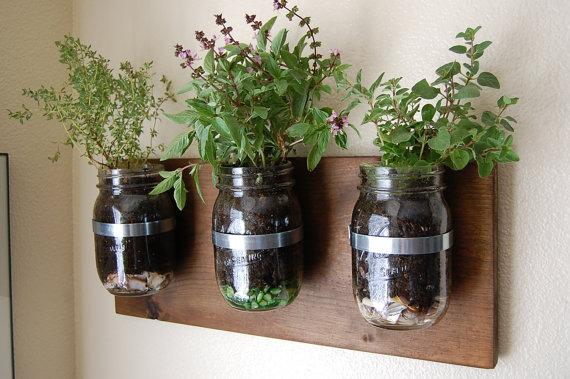upmarket-cool-herb-garden-glass-mason-jars-wall