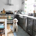 Charcoal-and-white-kitchen-with-dash-albert-rug-and-a-goldendoodle