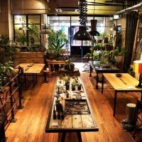 何かと話題のボタニカル。東京で探すならぜひチェックして欲しいボタニカルショップ5選