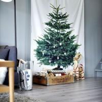 壁をキャンパスに☆クリスマスの飾りを壁に飾ってみよう!