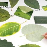 植物のプロがつくった、葉っぱのお手紙【ネオグリーン リーフレター】で想いを届けよう。
