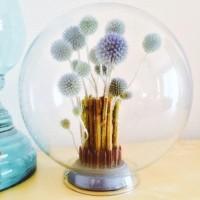 どんな風に魅せる?アイデア次第、ガラスドームで彩るインテリア集♡