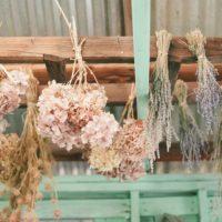しっとりとした雰囲気を楽しんで♡紫陽花のある風景を楽しむインテリア