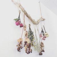 秋にぴったりなお花を飾ろう☆ドライフラワーでつくる秋テイストのインテリア♪