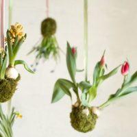 お部屋に小さな緑の「和」を取り入れよう!可愛らしい苔玉特集♡