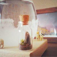 天候によって姿を変える結晶を楽しめるインテリア!不思議で美しいテンポドロップ