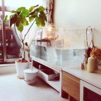家に居ながら癒しを求めて!ステキな水槽台や水槽のあるインテリアの実例をご紹介☆
