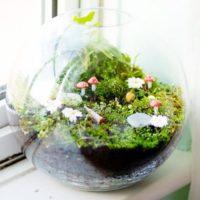 ガラスの中のグリーンアイテム!テラリウムを飾って素敵なインテリアを