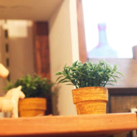 恵比寿にある落ち着きのあるカフェ10選