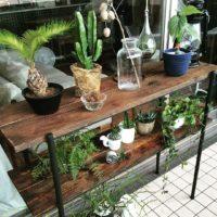 知る人ぞ知る、「MOKUZAN森谷木材」の家具で存在感のある部屋に