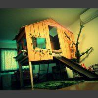 よりネイティブ(天然のままに)に自然を感じたい♪ツリーのあるインテリアと家具を紹介