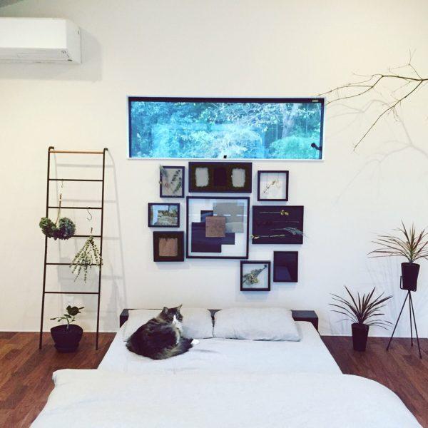 額縁にはいろんな素材をおさめてディスプレイ。広い壁面と横長の窓を活かしてアート作品のようなおしゃれな空間に。