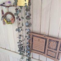 小さなハート型の葉をつける観葉植物「ハートカズラ」ディスプレイ例をご紹介♡