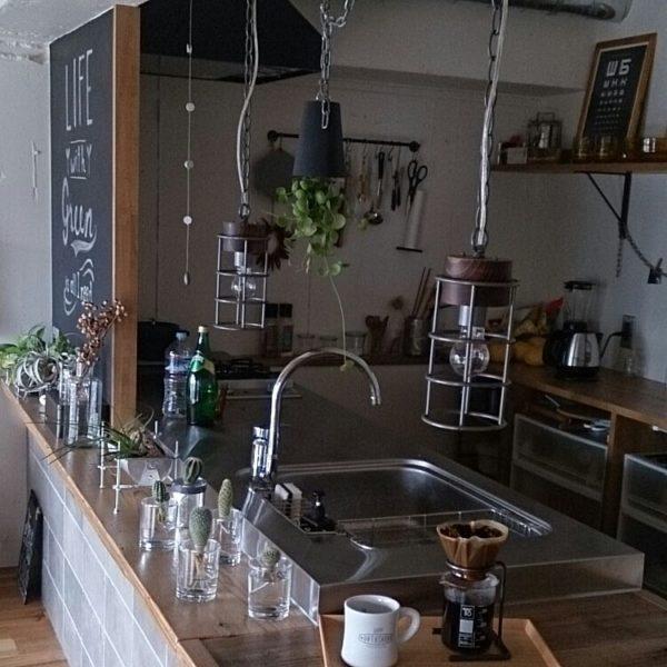 グリーンがたくさんあるキッチンですね。料理をする場所でも水耕栽培なら安心ですね。