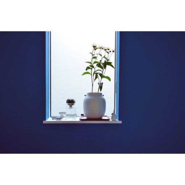 窓辺も植物を飾りたくなる場所の1つですよね。こちらは季節の花と一緒に水耕栽培のサボテンを。好きなものを組み合わせて飾るのも素敵ですね。