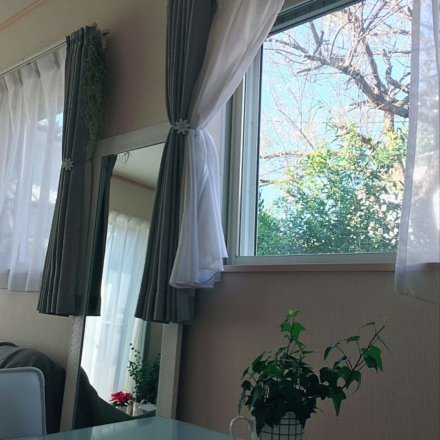 春に向けて涼しそうな雰囲気のお部屋。グレーのカーテンが魅力的に見えますね。お庭には梅の花が咲いているそうですよ。