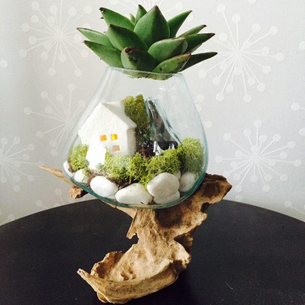 ガラスの容器に作った苔のテラリウムの上に多肉植物でフタをしてます。流木の形も面白いですが、全体のフォルムが独特でかわいいですね!
