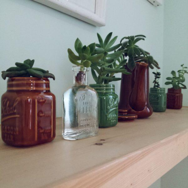 こちらも水耕栽培のアイディアですが、いろいろな瓶を使っているので変化を楽しめます。
