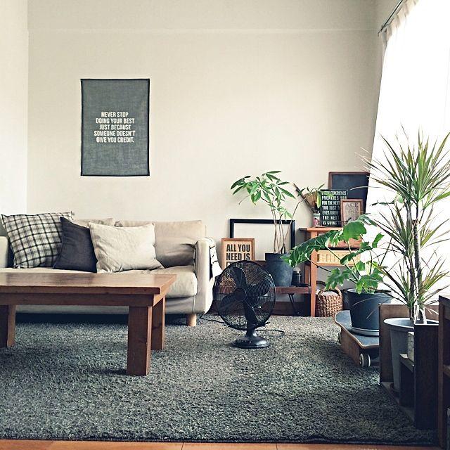 観葉植物とソファー