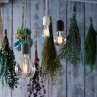 おしゃれなライティングアイテムで、ロマンチックなお部屋作りをしてみませんか♡