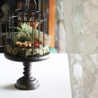 100均DIYでグリーンをもっと楽しもう!観葉植物やフェイクグリーンをおしゃれにするアイディア集♡