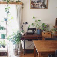 いつも緑に癒されていたい♡お家で育てる観葉植物、お花のある暮らしアイデア20選