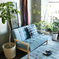 大きな観葉植物を置いてワンポイントに!お部屋をリラックスできる空間にしよう