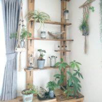グリーンのある生活に憧れる☆観葉植物インテリアが素敵なお部屋20選