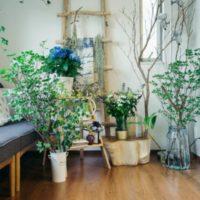 今話題のボタニカルのある暮らし♡リフレッシュできる空間づくりに植物柄を取り入れてみよう♪