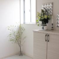 観葉植物を置いてお部屋に癒しを!好きな植物を飾って日々のストレスを軽減しましょう!