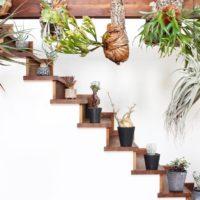 観葉植物をお部屋のアクセントに♪~爽やかな空気が流れる心地良いお部屋~