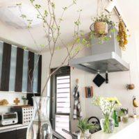 暑さにも負けないおすすめの枝もの!ドウダンツツジをお部屋に飾ろう♡
