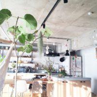観葉植物のオシャレなコーディネート20選!お部屋の雰囲気を簡単チェンジ♪
