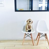 1人掛けの椅子をピックアップ☆おしゃれなインテリアコーディネート実例15選