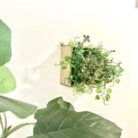 【100均DIY動画】壁にかけられるグリーンをDIY!作り方を動画でご紹介