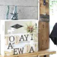 【連載】生活感の出るティッシュを100円グッズでオシャレに魅せる収納をしよう!
