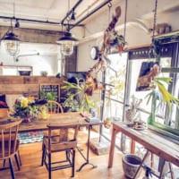 天井や壁の高さ、空間を利用!グリーンの素敵な取り入れ方15選!